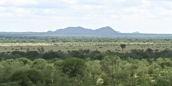 Part of Africa green