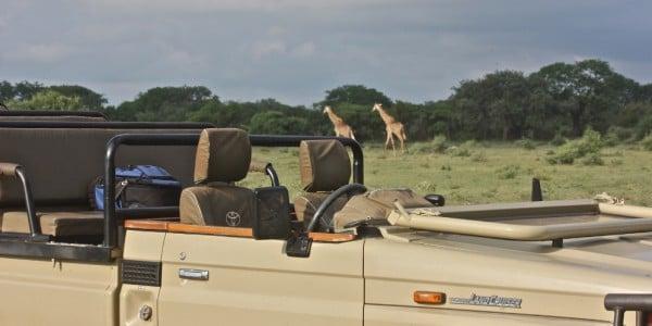 Lunch break in Africa