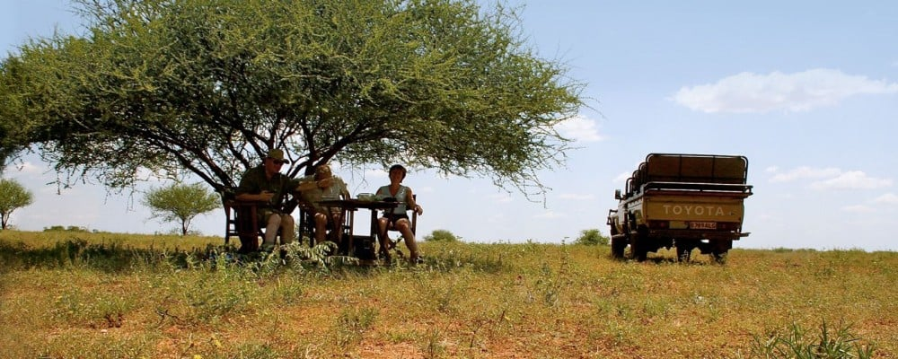 Lunch with a view in Africa