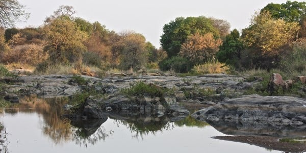 Limpopo river calm