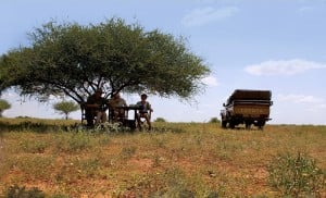 Relaxing in your part of Africa