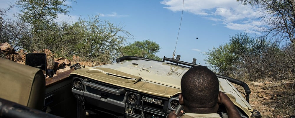 Part of Africa game drive