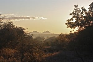 Botswana - Tuli Block - Part of Africa